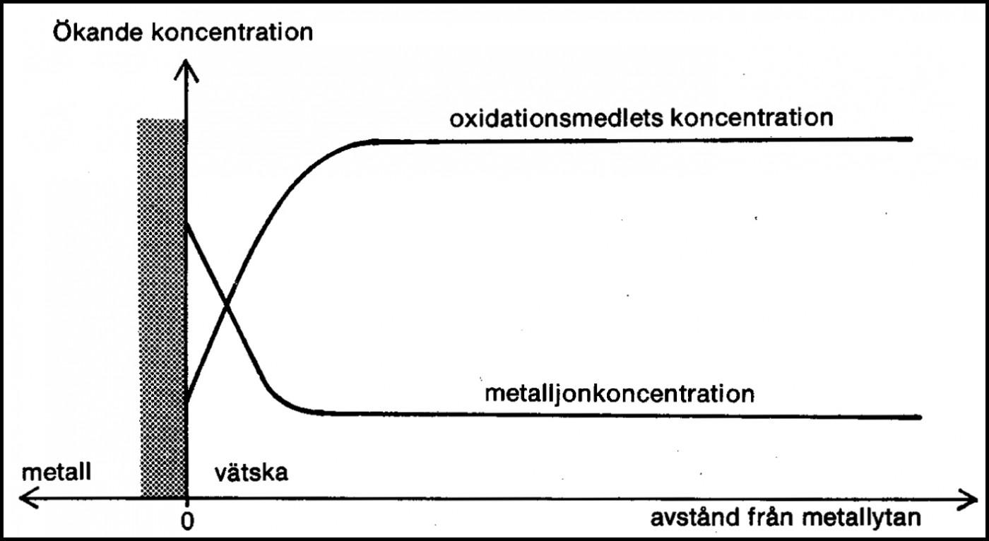 Koncentrationsdifferenser vid en allmänkorroderande metallyta